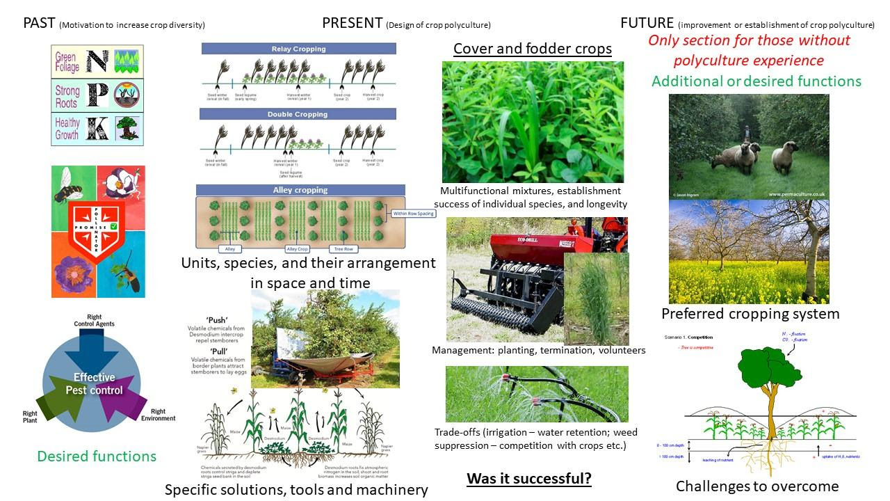 Diversified cropping systems with nut trees: video lectures and invitation to participate in the survey