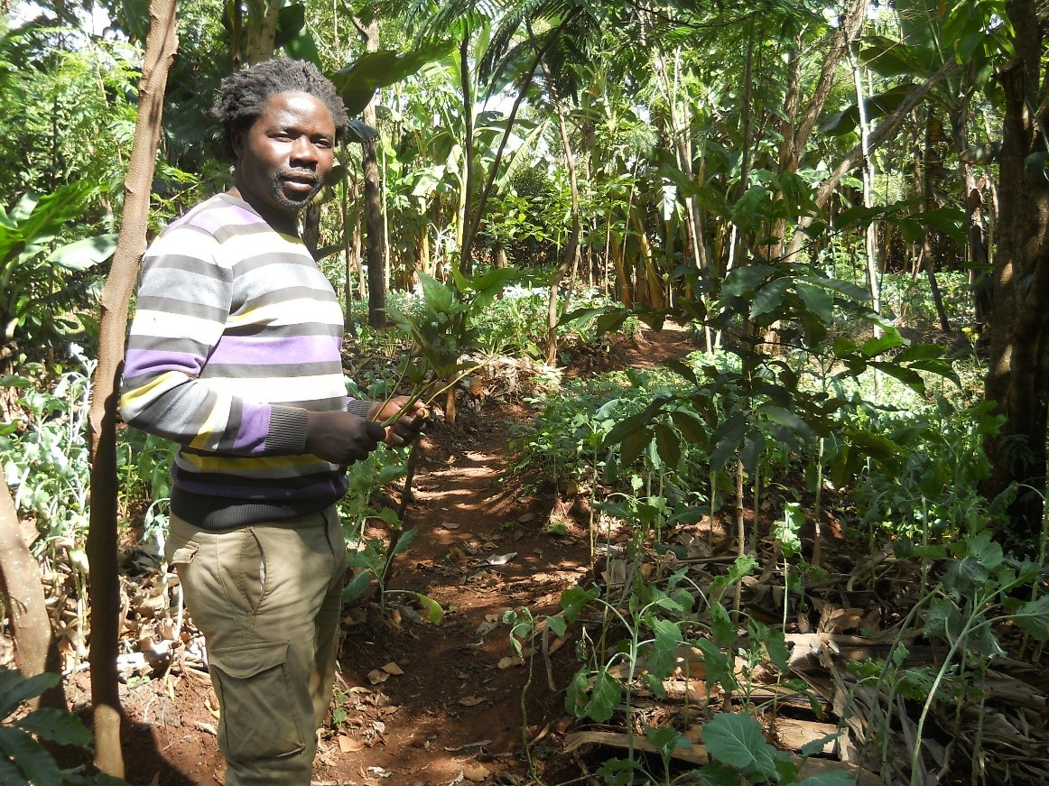 Building permaculture bridges in Kenya